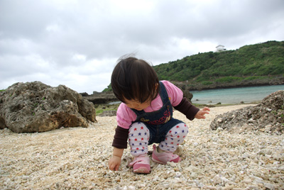貝殻と珊瑚