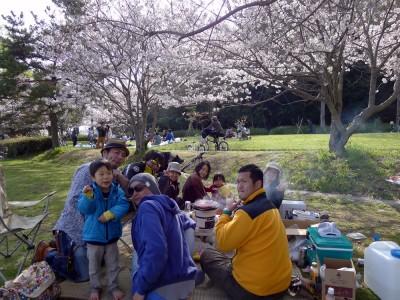 カイト仲間と桜